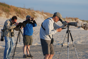 3rd Annual VLM Birding Cup @ Virginia Living Museum | Newport News | Virginia | United States