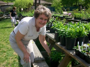 Spring Native Plant Sale @ Virginia Living Museum | Newport News | Virginia | United States
