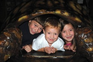 Military Child Weekend at the VLM @ Virginia Living Museum   Newport News   Virginia   United States