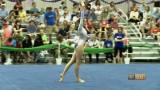 VA Gymnastics State Championship