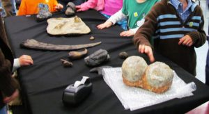 Dino Fossil Discovery Day @ Virginia Living Museum | Newport News | Virginia | United States